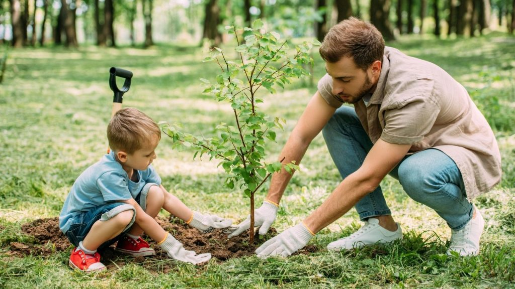 Plant trees to avoid global warming